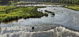 La révision des Sdage va révéler un déclassement de l'état de certaines masses d'eau