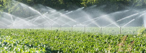 Ressources en eau : les tensions nécessiteront des arbitrages… au détriment de l'agriculture ?