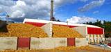 Chaufferie biomasse : le fonds chaleur, bon pour l'économie française