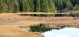 Zones humides : un troisième plan d'action pour tenter de les protéger