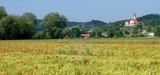 Projet agro-écologique : un bon démarrage mais l'essentiel reste à faire