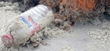 L'impact des déchets plastiques en mer coûte 13 milliards de dollars par an