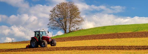 Loi d 39 avenir agricole vers une volution sensible des for Permis agricole