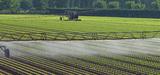 Réutilisation des eaux usées pour l'irrigation : le CGDD identifie plusieurs freins à son développement