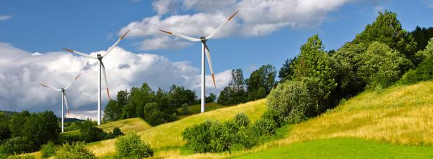 Le nouvel arrêté tarifaire éolien publié malgré un avis défavorable de la CRE