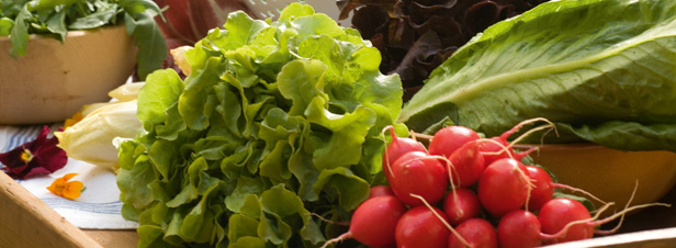 Les fruits et l�gumes bio plus riches en antioxydants, selon une �tude scientifique