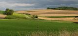 Politique agricole commune : quand les écologistes mettent leur nez dans les négociations