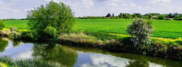 Ségolène Royal veut faire de la lutte contre les nitrates et les pesticides une priorité