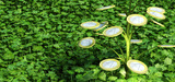 Projet de loi de finances pour 2015 : les mesures fiscales en matière d'environnement