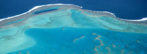 Changement climatique : l'acidification des océans s'accélère