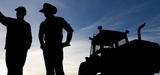 Mesures agroenvironnementales : les conditions du succès des démarches collectives