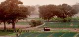 Lutte contre la désertification : l'ONU et l'UE renforcent les moyens financiers