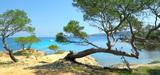 Parc national de Port-Cros : l'Ae pointe l'enjeu de l'impact des activités touristiques