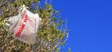 Controverse houleuse sur l'interdiction des sacs en plastique en Europe