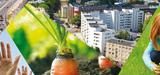 Etat de l'environnement en France : Ségolène Royal souligne les marges de progression
