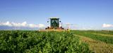 Un plan pour accroître l'indépendance en protéines végétales de la France