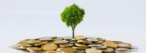 """PLF 2015 et PLFR 2014 : les dispositions """"environnement"""" définitivement adoptées"""