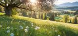 Les sols : un atout contre le réchauffement climatique