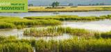 Biodiversité : les députés amendent les grands principes du projet de loi