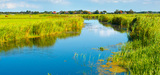 La compensation par l'offre, avancée ou recul pour la biodiversité ?