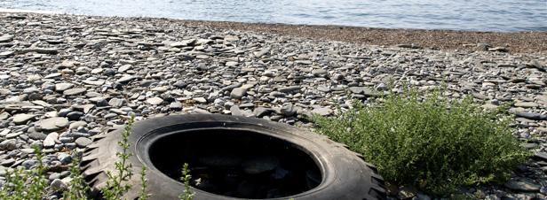 Le Gouvernement renforce les sanctions en matière environnementale