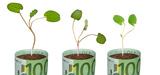 Première obligation verte lancée par une entreprise de taille intermédiaire