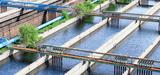 Eco-activités : un marché de 31,5 milliards d'euros