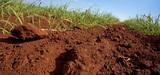 La protection juridique des sols manque de clarté