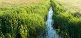 Les préfets établissent la cartographie des cours d'eau sur fond de contestation