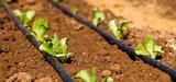 Financement des retenues d'eau : les conditions de la levée du moratoire
