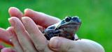 L'Agence française pour la biodiversité est sur les rails