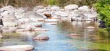 Qualité de l'eau : les objectifs nationaux de réduction des substances dangereuses sont fixés