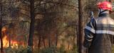 Les préfets doivent déployer une stratégie de prévention des incendies de forêt avant janvier 2016