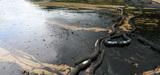 Les sanctions des rejets polluants en mer restent très rares