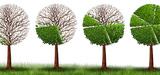 Petites entreprises : la transition écologique est incontournable pour garder des parts de marché