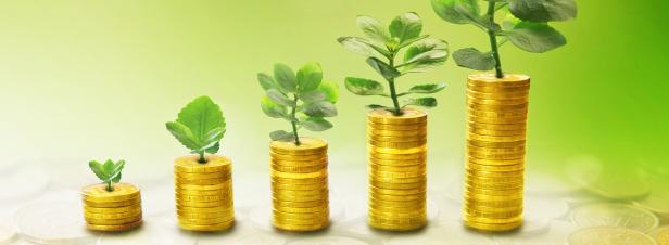 Loi de finances pour 2016 : ce qui a été voté en matière d'environnement