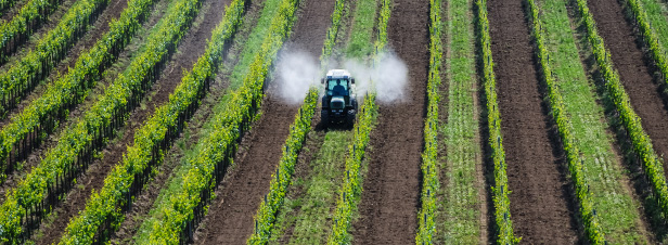 Pesticides : l'enqu�te sur France 2 bouscule les certitudes