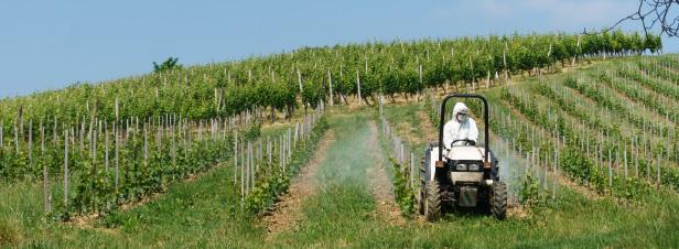 """Pesticides : une """"boîte à outils"""" donnée aux préfets pour protéger les personnes vulnérables"""