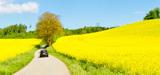 Agrocarburants : la Cour des comptes appelle à modifier la politique d'aide