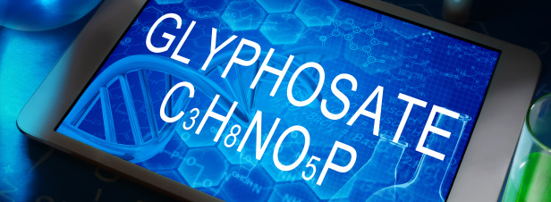 La question de la classification du glyphosate reste entière après l'avis de l'Anses