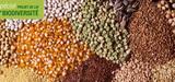 Les d�put�s remettent en cause le libre �change des semences entre agriculteurs