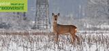 Agence fran�aise pour la biodiversit�: pourquoi les chasseurs font bande � part