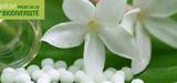 Loi biodiversité : le protocole de Nagoya à l'épreuve de la constitution française