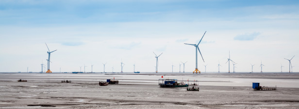 Eolien offshore : l'autorisation unique soulève des questions