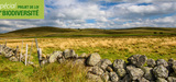 Loi biodiversit� : l´Assembl�e adopte un dispositif d´obligations r�elles environnementales �dulcor�