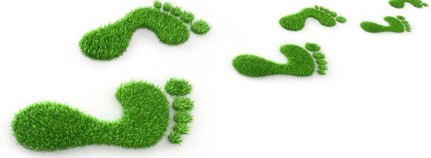 Reporting carbone : il est primordial d'intégrer les émissions indirectes