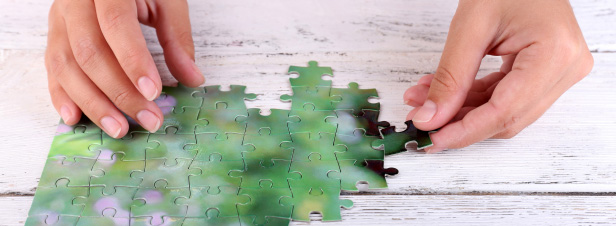 Transition écologique : la mise en œuvre de la stratégie nationale est préoccupante