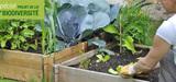 Le S�nat clarifie la l�gislation applicable � l´�change de semences entre jardiniers amateurs