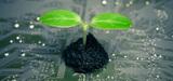Smart water et dépollution des sols parmi les écotechnologies clés pour 2020