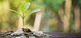Investissement responsable : 746 milliards d'euros mobilisés en France en 2015